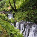 夏休みに軽井沢で癒されてきました!おすすめの観光スポット!