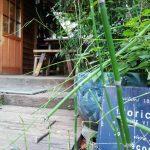 武蔵小杉の隠れ家カフェ 「HanaCAFE nappa69」 で優雅な休日を堪能!