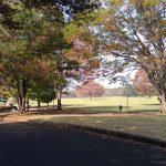 昭和記念公園は手ぶらでバーベキューが楽しめるおすすめスポット!