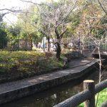 川崎市「緑化センターまつり」に参加しました!会場の様子をご紹介!