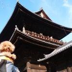 まりんちゃんと秋の京都へ小旅行